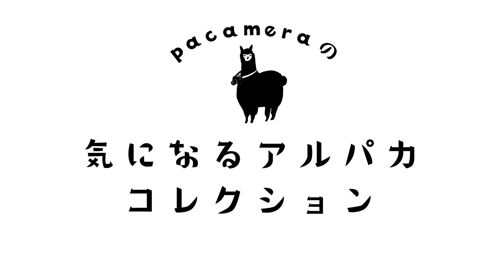 「pacameraの気になるアルパカコレクション[第1回]りゅう」のアイキャッチ画像
